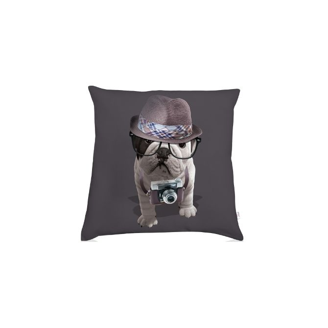 Coussin bouledogue reporter Monteleone
